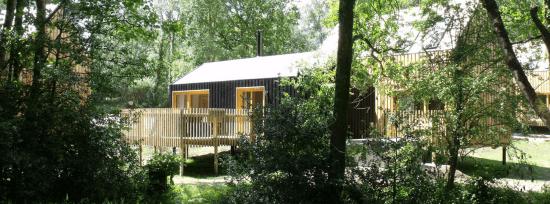 Burnbake Forest Lodges 2