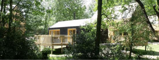 Burnbake Forest Lodges 3